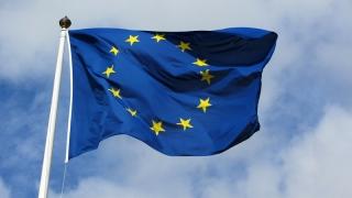 Estonia înlocuieşte Marea Britanie la președinția UE
