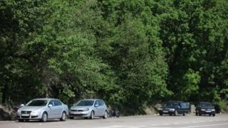 Ministrul de Interne anunță anchetă în cazul tâlharilor din pădurea de la Sinești