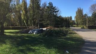 Parcul Tăbăcărie, groapa de gunoi a Constanței!