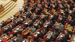 PNL depune, marţi, moţiunea de cenzură la adresa Guvernului Dăncilă