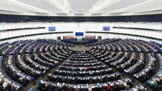 Parlamentul European va organiza o dezbatere despre protestele din 10 august