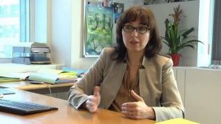 Guvernul înăsprește sancţiunile pentru contravenţii silvice
