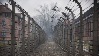 Pedeapsa cu închisoarea, eliminată dintr-o Lege privind Holocaustul! Vezi unde