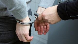 Nouă persoane, reţinute în dosarul de evaziune în care este implicată şi ferma deţinută de fiul lui Dragnea