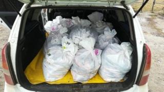 Dosare penale și pește confiscat. Poliția face razii pentru combaterea braconajului