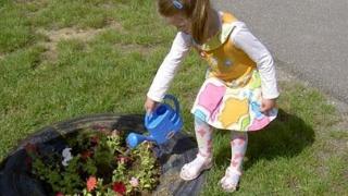 Plantează, numește și etichetează o floare!