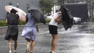 36 de județe, sub avertizare de Cod galben de ploi torențiale și vijelii