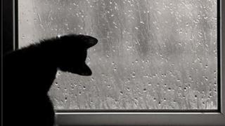 Vezi când se opresc precipitațiile mixte la Constanța!