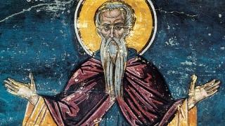 Sfântul Cuvios Pimen cel Mare, unul dintre marii asceți egipteni