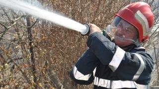 Pompierii în alertă! Incendiu la ieșire din Cogealac!
