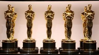 """Premiile Oscar 2021:""""Colectiv"""" pierde în faţa documentarului""""My Octopus Teacher"""""""