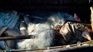 Prinși cu saci de pește în căruță, fără a avea documente legale