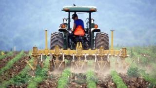 Fermierii vor să angajeze, dar românul fuge de muncă