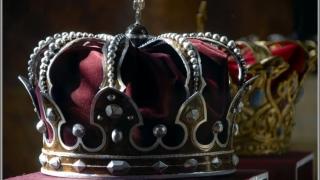 Proiectul legislativ privind statutul juridic al casei Regale, retras