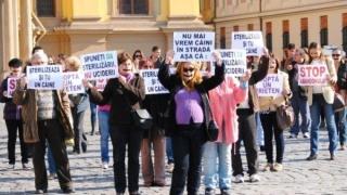 Proteste împotriva eutanasierii câinilor fără stăpân