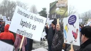 Protest al medicilor veterinari, în fața Guvernului României