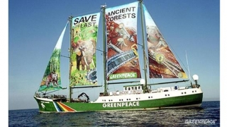 Rainbow Warrior, nava-fanion a Greenpeace, va ancora pe 29 mai la Constanța