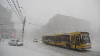 RATC suplimentează autobuzele și asigură transport gratuit
