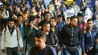 Zece mii de refugiaţi sirieni au ajuns în Statele Unite în ultimele 11 luni
