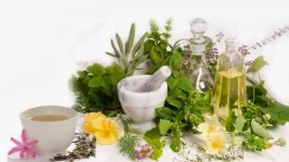 Reparați-vă plămânii cu aceste 5 plante!