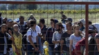 Peste de 1.300 de oameni, reţinuţi la punctele de trecere a frontierei germane