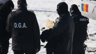 20 de persoane reținute până marţi seara, în urma descinderilor de la Moravița