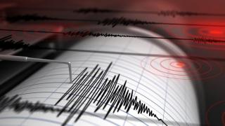 România s-a cutremurat puternic! Vezi în ce zone s-a resimțit