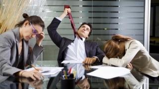 Studiile superioare nu au nicio şansă pe piaţa muncii! Se caută necalificaţi!