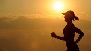 Cât efort fizic este necesar pentru a compensa o zi de ședere?