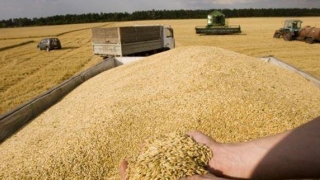 Rusia, cel mai mare exportator mondial de grâu, întărește controalele