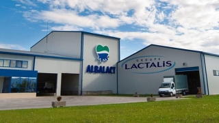 Salmonella în lapte praf! Vinovaţi: francezii care conduc piaţa din România