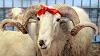 Kurban Bayram - Sărbătoare mare pentru musulmanii din România