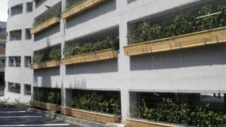 """Se închide """"Parcarea Verde"""" de la Spitalul Județean"""