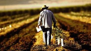 Senatorul Mihu nu-l lasă pe ministrul Daea! O nouă interpelare pe agricultură
