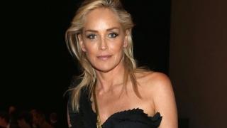 Sharon Stone va compune muzică alături de solistul trupei Hurts