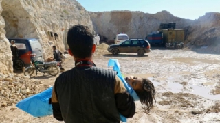Vladimir Putin și Angela Merkel au convenit asupra unei investigații privind atacul chimic din Siria