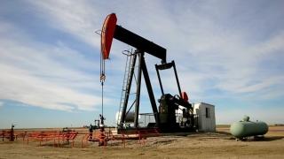 Barilul de petrol Brent a coborât sub pragul de 35 de dolari