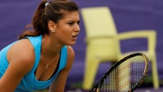 Cîrstea, Ţig şi Bogdan vor juca marţi în primul tur al turneului de la Tașkent