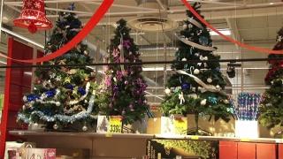 """Spune STOP """"crimelor verzi""""! Fă-ți un Crăciun eco!"""