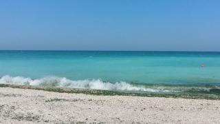 Stațiunile de pe litoral care au cea mai bună calitate a apei