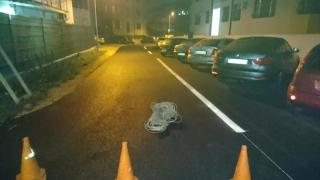 Opt străzi nou asfaltate în cartierul Compozitorilor din Constanța