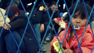 Studiu privind migrația din UE, comandat de Guvernul britanic
