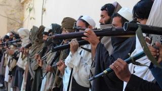 Talibanii vor să discute civilizat cu americanii! Nu e banc...