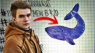 Creatorul jocului Balena Albastră, condamnat la închisoare