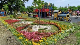 Ţara Piticilor îşi pune hainele de vară, ţesute din 30.000 de flori