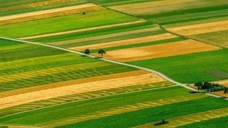 Terenuri alocate de Ministerul Agriculturii pentru tinerii fermieri