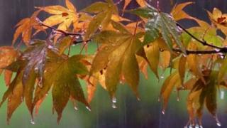 Vreme mohorâtă și ploi! Când se va încălzi din nou