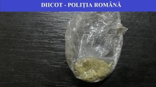 Traficanţi de droguri, reţinuţi! Acţionau pe raza Constanţa - Tulcea