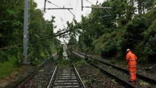 Trafic feroviar BLOCAT! Copaci căzuți pe un tren