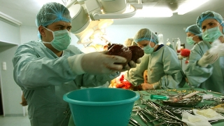 Criză de donatori și de încredere în sistemul de transplant